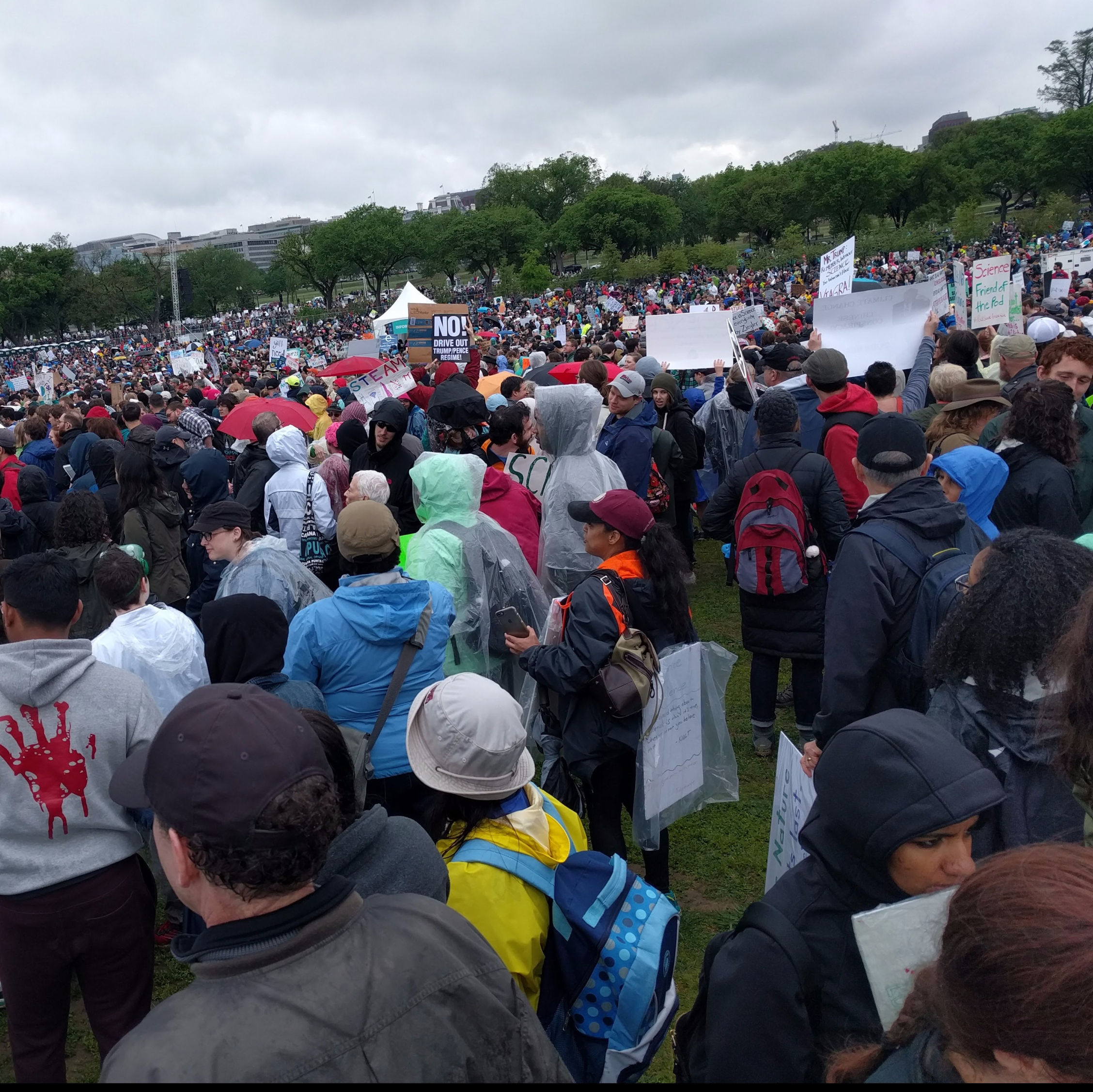 A crowd at a climate march