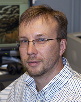 Igor Grigoriev