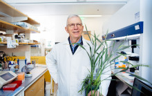 Man stands in a lab holding a plant