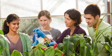 specht and lab members analyzing plants