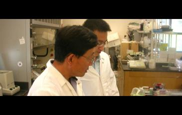 two scientists examine a plant in a lab