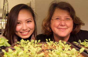 Chihiro Harai, researcher, and Mary Wildermuth, Principal Investigator