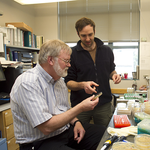 Gradaute Student Russell Scott (Right) working with Professor Steven Lindow (Left)