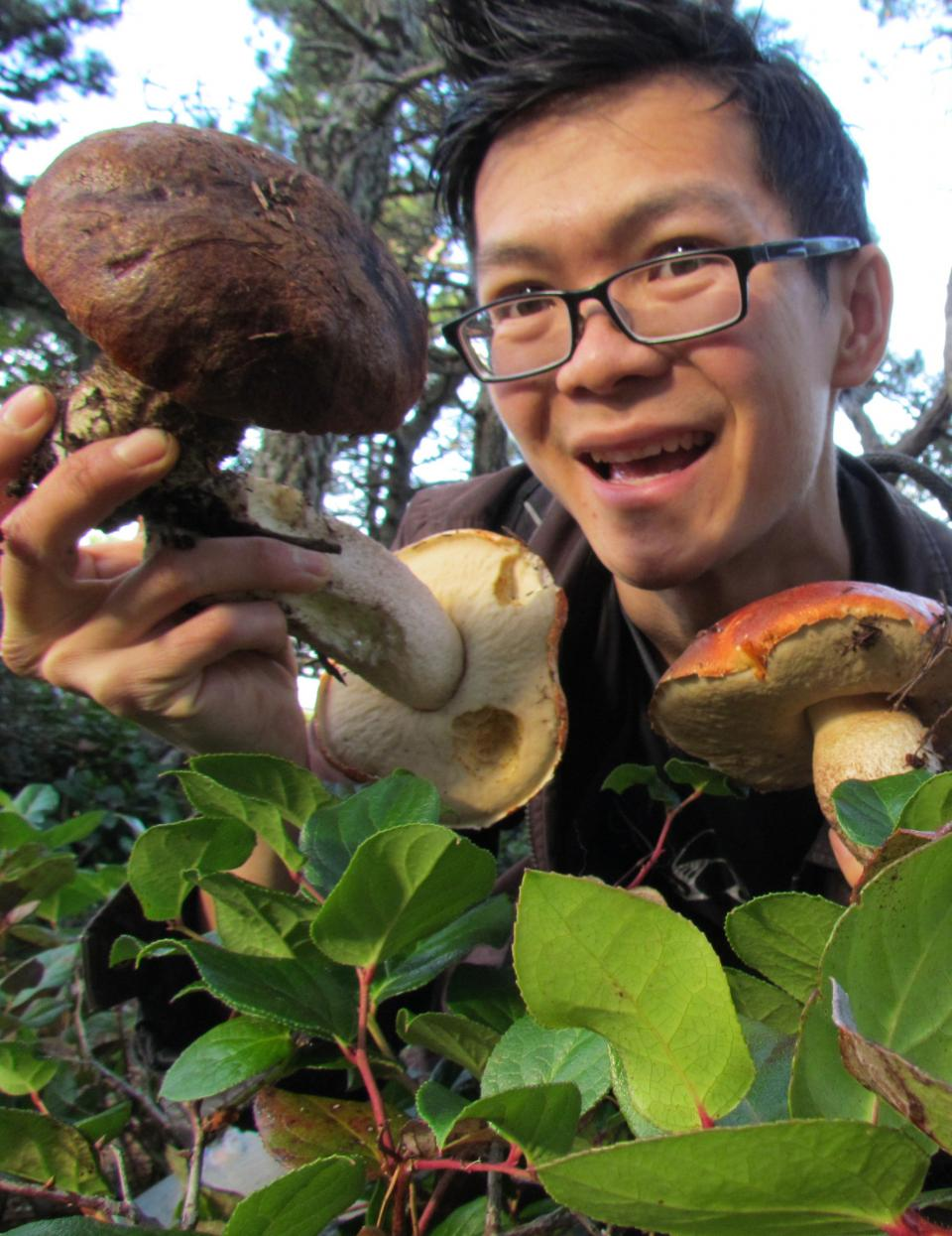 Researcher Ngu Nguyen in the field with a leccinum specimen